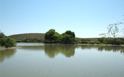 acreage for sale in west texas